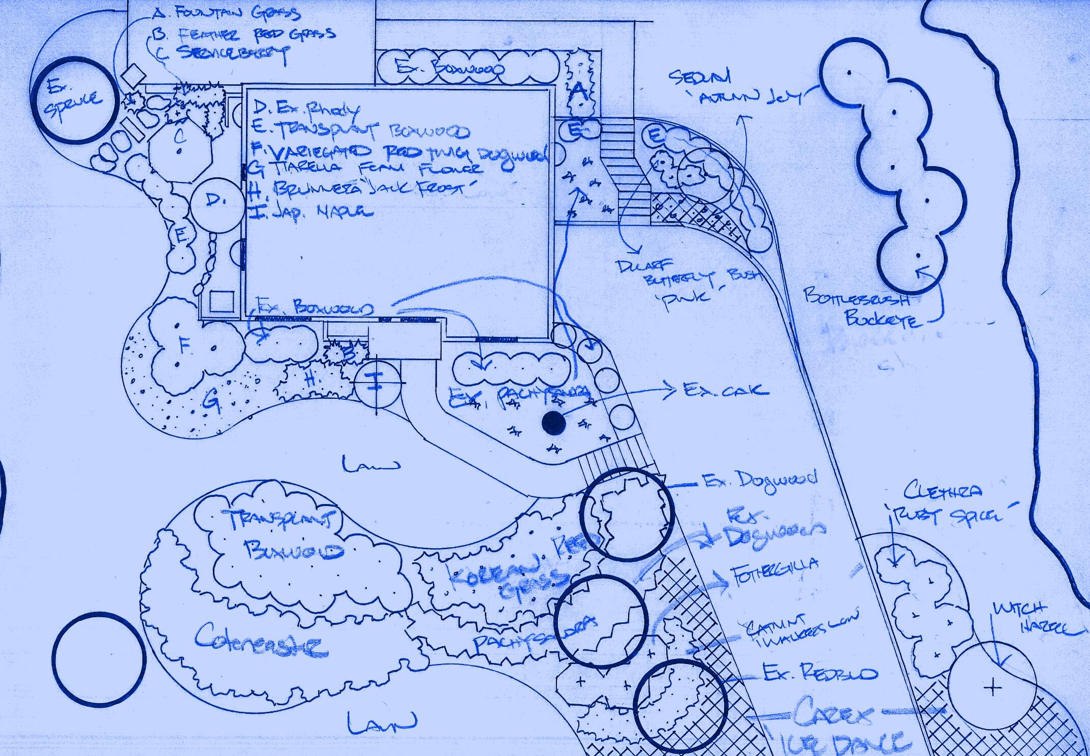 the-design-process