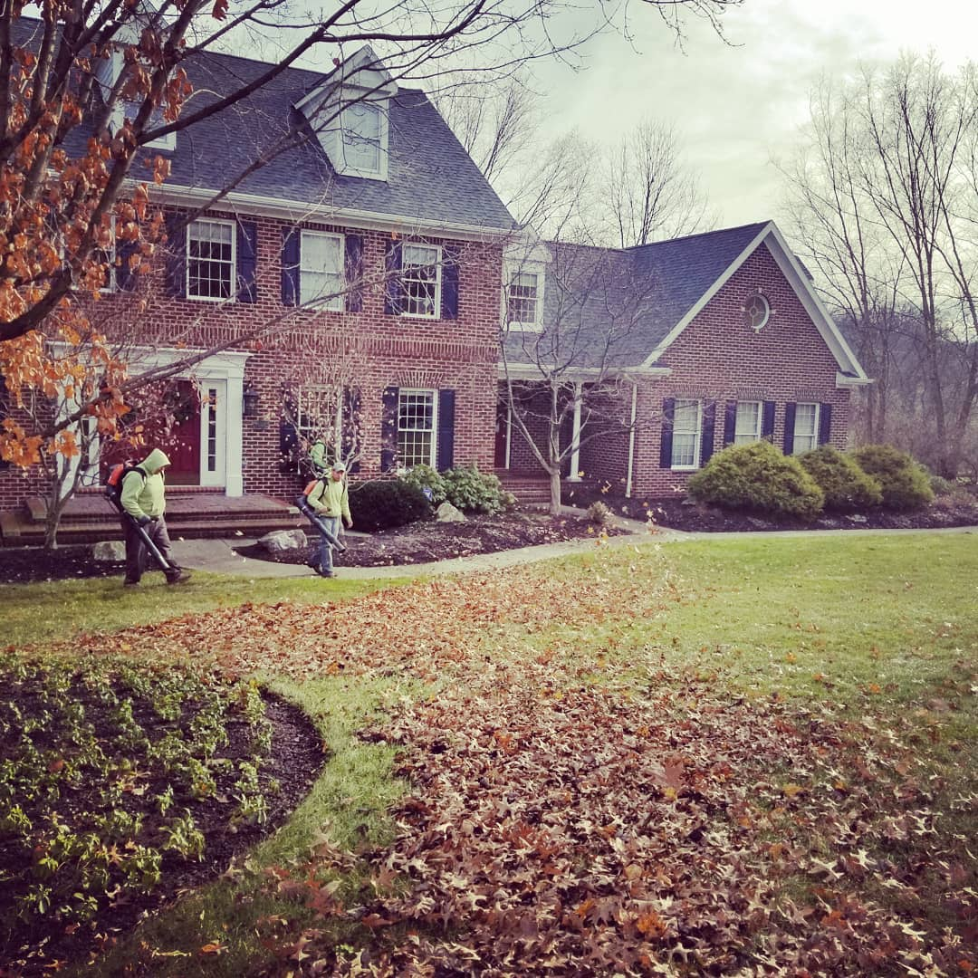 fall-cleanup-winter-garden-care